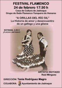 Lee más sobre el artículo Baile Flamenco