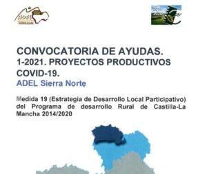 Nueva Convocatoria de Ayudas para Emprendedores Covid-19